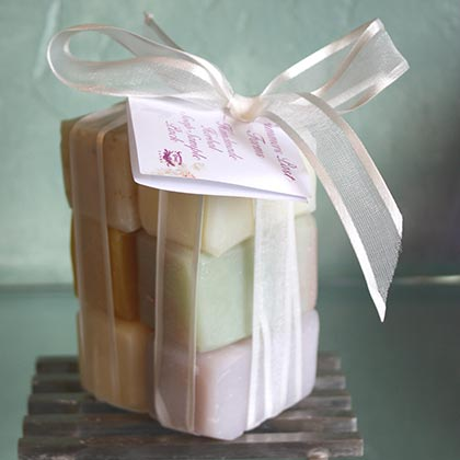 Soap Sample Pack