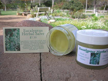 Eucalyptus Herbal Salve